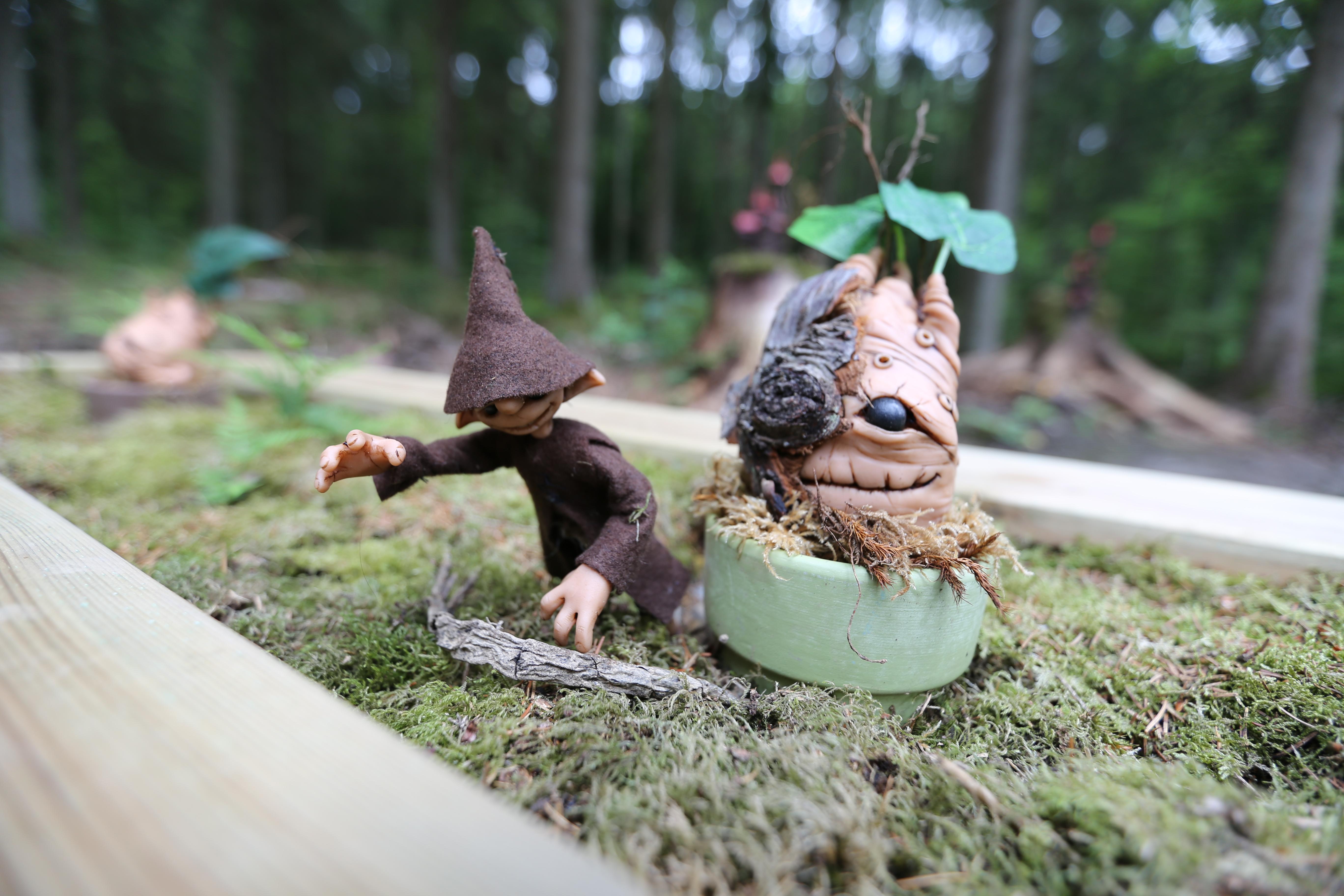 Photographie de potager magique réalisé par Yauque Company dans le parc de loisirs à thème Elfy park